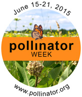 Natl pollinator week logo