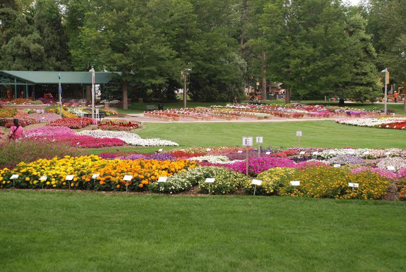 Merveilleux CSU Annual Flower Trial Garden
