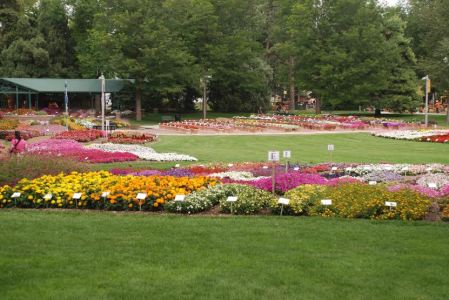 CSU Annual Flower Trial Garden