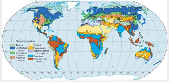 world-map-natural-vegetation