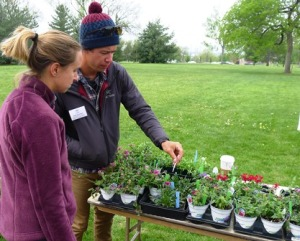 Apprentice Chad Thompson enjoyed his first plant sale by helping answer questions about annuals.