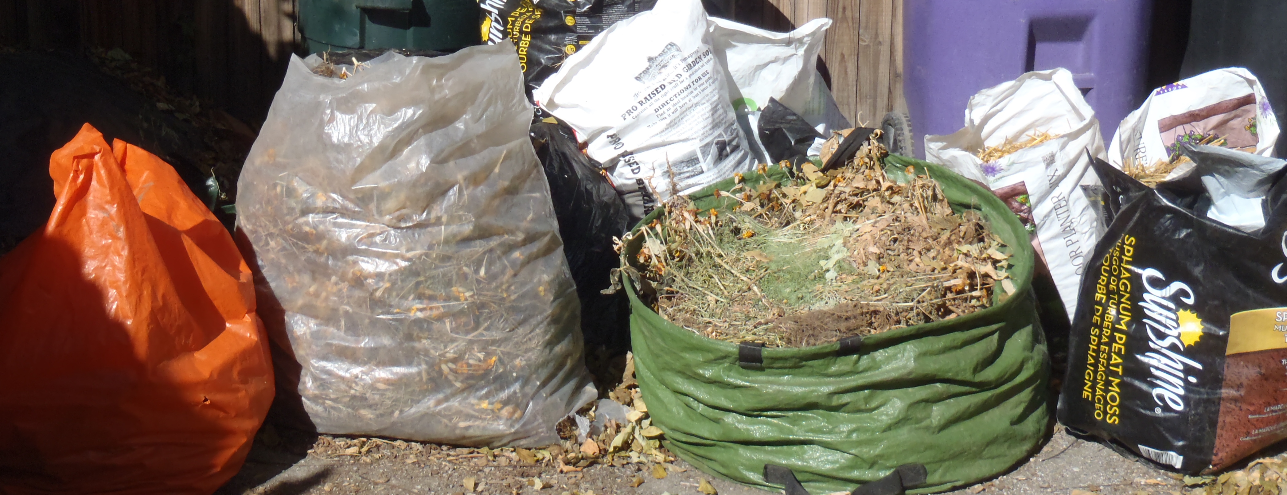 Sheet composting or … cooking up an experiment in the garden