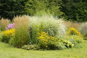 botanical-garden-413489_1920