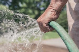 garden-hose-413684_1920
