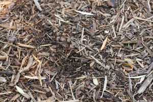 mulch-1100555_1920