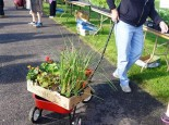 plant sale wagon